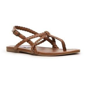 Steve Madden Kacey Brown Strappy Flat Sandals